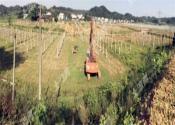 7月1號起,農村土地征收,一畝補償4萬元?