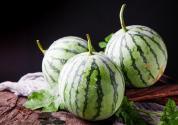 通過聲音辨別西瓜是否成熟的原理是什么?