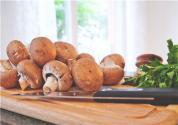 草菇夏季栽培新法技術要點有哪些?