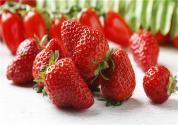 奶油草莓怎么種植?病蟲害如何防治?
