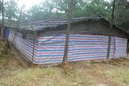 農村拆雞棚補償多少錢一平方米?