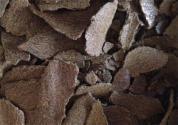 茶籽饼有哪些农业用途?使用注意事项是什么?