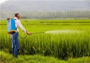稗斩停除草剂是什么成分
