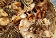 榛蘑多少錢一斤?有哪些功效和作用?