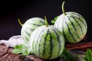 冬季西瓜價格大概多少錢一斤?怎么種才能豐產?