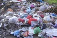 國家發布垃圾分類新標準!什么時候實施?做了哪些調整?