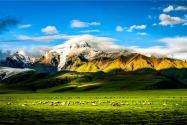 """西藏""""一村一品"""":助推特色農業產業化"""