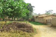 農村低保申請條件是什么?每月補貼多少錢?