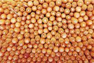2019全國糧食總產量1.3萬億!相比去年增長了多少?