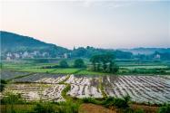 農村土地征用補償標準為多少錢一畝?征收款如何分配?