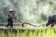2020年拖欠農民工工資新規定:逾期不付,加付五成以上賠償金!