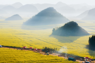 土地使用費與耕地占用費區別有哪些?