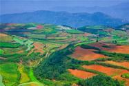 2020年征地補償有哪些新變化? 被征地農民享有這些權利!