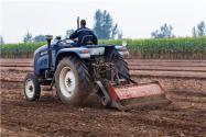 2020年適合農村辦廠項目有哪些?這3個項目成本低效益高!