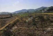 農村承包土地能抵押貸款嗎?2020年最新政策是怎樣?
