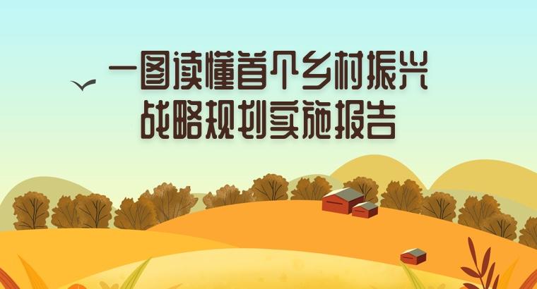 一圖讀懂首個鄉村振興戰略規劃實施報告
