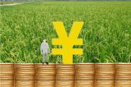 農村信用社創業貸款有什么要求?申請流程是什么?