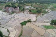 河南商城縣開展農村人居環境整治,加強鄉村生態振興