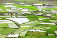 我國農村土地補償費是怎么算?補償標準有什么新變化嗎?