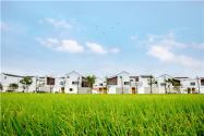 农村宅基地是怎么分配的?面积标准是怎样的?