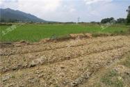 山東煙臺開展鄉村人才振興行動,到2020年培育新型職業農民8000人以上