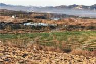 納雍縣國家儲備林項目土地流轉政策:流轉期限是多久?流轉費是多少錢一畝?