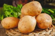 四川種出可生吃土豆!具體是什么品種的土豆?附詳情!
