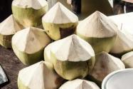 三亞景區椰子賣到20元!具體是怎么回事?什么椰子賣這么貴?附詳情!