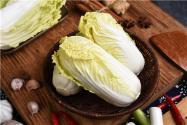 現在白菜價格多少錢一斤?其種植時間和方法是什么?