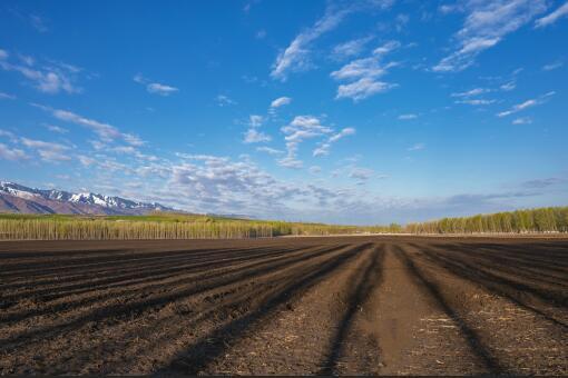 可以直接入市的农地有哪些-摄图网
