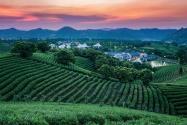 2021年家庭農場扶持政策有哪些?申請條件有哪些?