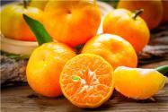 種橘子怎么種?種橘子有哪些注意事項?
