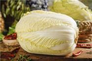 秋季大白菜種植技術是什么?如何管理秋季大白菜?