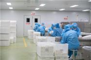 2021年年賺百萬的小型加工廠有哪些?這五個項目最好賺錢!