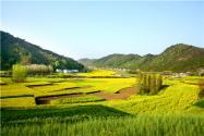 2021年中央一號文件關于農村土地承包政策有哪些?附詳情!
