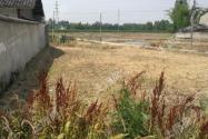 農村建設用地審批程序