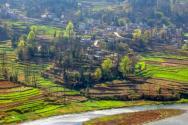 土地流轉是什么意思?2021年農村土地流轉一畝地大約多少錢?