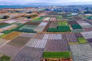 耕地紅線是什么意思?是多少億畝?什么時候提出來的?