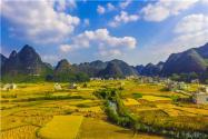 《人類減貧的中國實踐》白皮書發布!主要內容是什么?附全文!