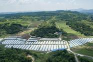 2018武漢出臺新政策鼓勵規范工商資本投資農業農村:投資11種農業項目可或獎補