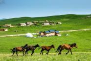 新疆家庭農場注冊條件有哪些?申報需要哪些材料?