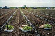 設施農業用地最新政策2021:建廠房算違建嗎?