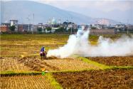 農業標準地是什么意思?具體怎么改革?
