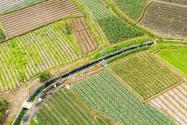 海南耕地多少錢一畝?2021耕地地力保護補貼標準是多少?