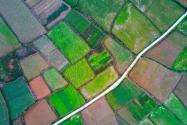 什么情況下可以占用永久基本農田?符合這些條件才可以!