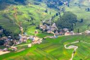 10種農村級集體經濟發展模式助力鄉村振興(附典型案例)