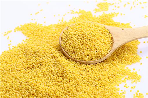 谷子是小米吗?和小米的区别在哪?具体有这5大区别!