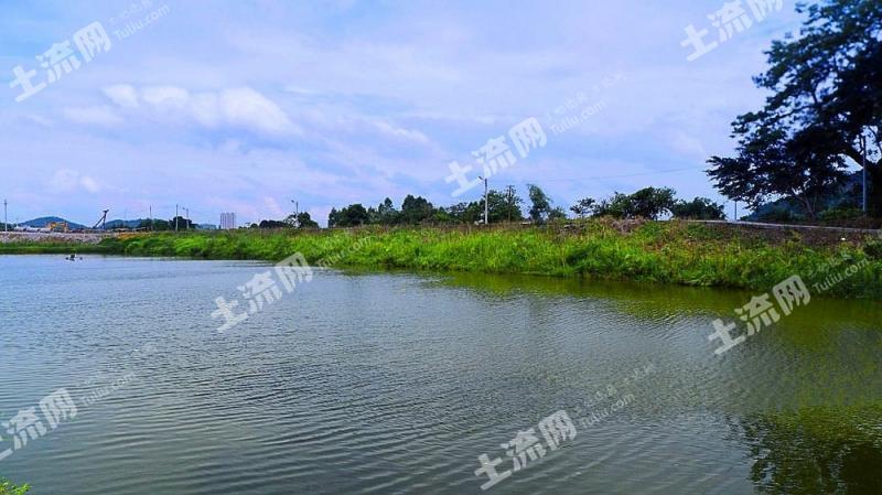 惠州博羅縣園洲鎮 70畝 魚塘出租