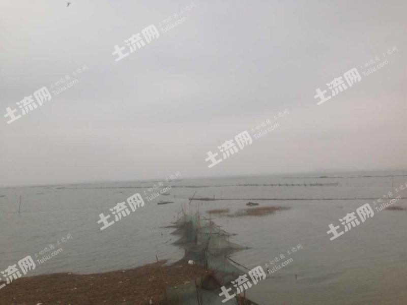 漳州漳浦 120畝 沿海灘涂 出租