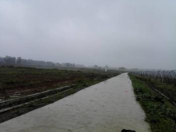 合肥长丰县 120亩农业园出租(含部分大棚、滴灌、水肥一体、办公用房、园区道路)